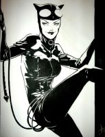 catwoman commission by lazeedog