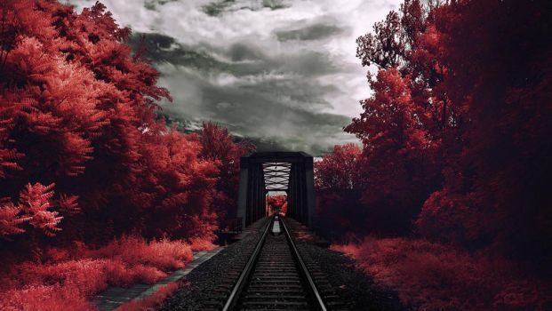 deep red vision by elopan