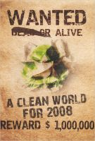 A clean world for 2008 by romain69
