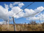 Fence Line by DPasschier