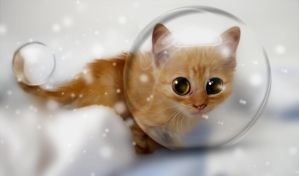 Kitty in the snow bubbles by hallbe