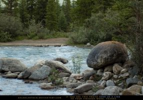 Creekside Boulder 2 by SalsolaStock