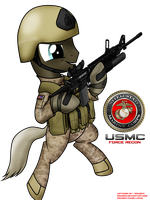 [request] USMC force recon pony by orang111