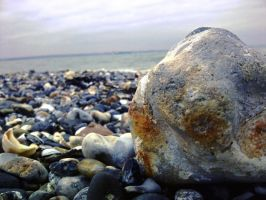 Pebbles by EveryDayIsNewToMe