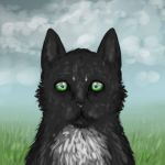 Ravenpaw by Loki-the-King
