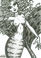 Paquia : Sexy Mermaid ACEO by alyssakay