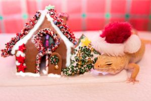 Lucille's Gingerbread House - 3202 by creative1978