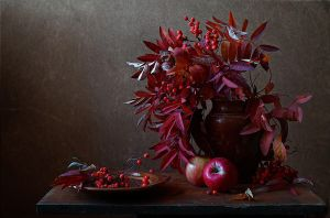 Autumn in red by An-gora