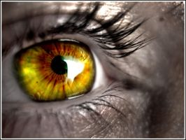 Picture 582_Eye by InfiniteCreations