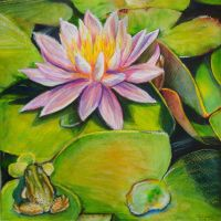 Frog and  Lilies by heatherkparks