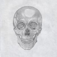 scull by crowen