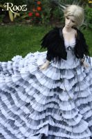 The Empresses new Dress by xRooz