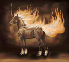 Rapidash by stalit