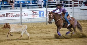STOCK 2013 Rodeo-83 by fillyrox