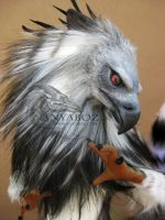 Harpy Eagle Room Guardian by AnyaBoz