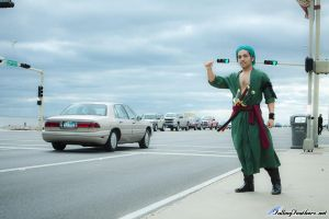 Zoro Hitchhiking by sonicmario3