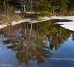 Winter's Retreat by Brian-B-Photography