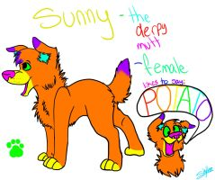 Sunny Ref!! by iW-O-L-F