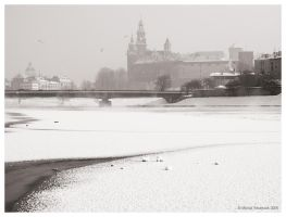 Cracow - frozen river by MichalTokarczuk