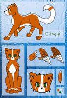 Citrus Ref by Greysounds