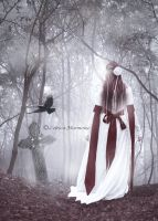 My Kingdom Come by Celtica-Harmony