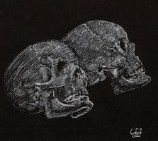 Two Skulls by WillWorks
