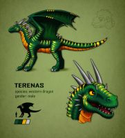 Terenas Character Sheet by jrtracey