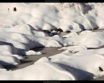 Snow Waves by ALP-Stock