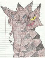 Hawkfrost and Tigerstar by Leopardclawthecat