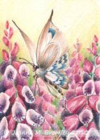 Butterfly and Pink Foxgloves by JoannaBromley