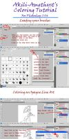 Akili's Coloring Tutorial for Photoshop by Akili-Amethyst