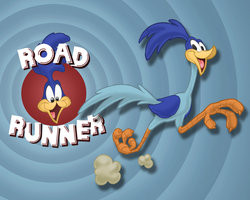 Road Runner Wallpaper by E-122-Psi