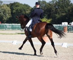 National Dressage and Jumping_108 by CalyHoney