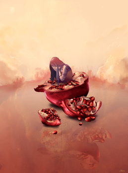 Pomegranate by alterlier