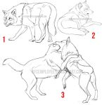 Wolf premades: Yay all sold! by KFCemployee