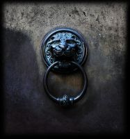lion at the door 5 by awjay