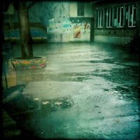 One rainy day with Lomo by SebastienTabuteaud