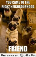 Ah, thanks pugs by dxdiagbg