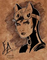 Catwoman Sketch by edwinj22