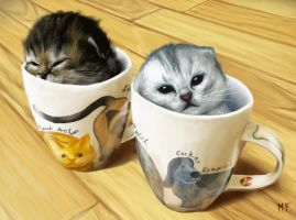 Kittens in Cupz by MegaFancy