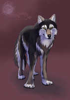 Trade: Moon the Direwolf by EmberWolfsArt