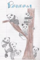 PANDAS by rklover7109