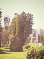 Church and Trees by martinemes