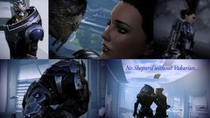 No Shepard Without Vakarian by Ashynioki