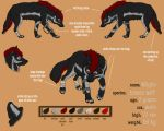 Whyko Charactersheet by Thyria