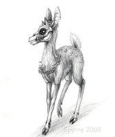 TEF: Fawn with skull by Spyrre