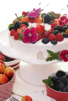 Summer. Fruits. Cheesecake. White Chocolate Sauce by theresahelmer