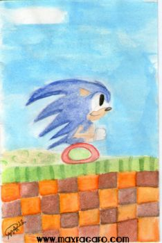 Sonic The Hedgehog by Maxpow