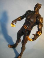 Black Panther Marvel-DC by cusT0M