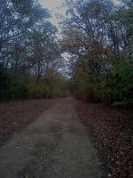 The End Of The Dirt Road. by daddysgirl554